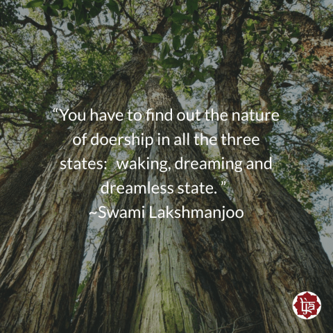 """You have to find out the nature of doership in all the three states: waking, dreaming and dreamless state. "" ~Swami Lakshmanjoo"