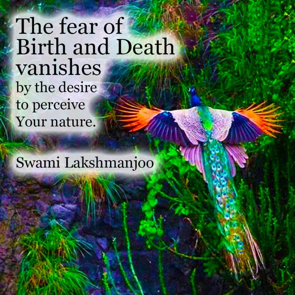 The fear of birth and death . . . Swami Lakshmanjoo
