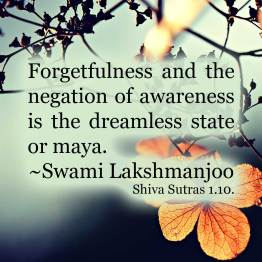 Three States of awareness from a yogic point of view