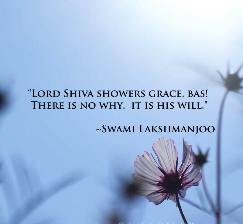 Grace explained by Abhinavagupta in Tantraloka