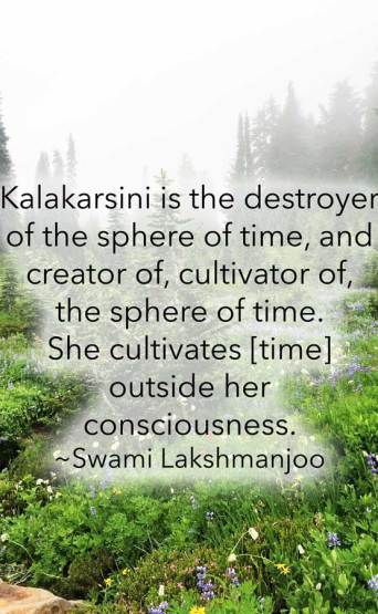 Kālakārṣiṇī is the destroyer of the sphere of time, and creator of, cultivator of, the sphere of time. She cultivates [time] outside her consciousness. ~Swami Lakshmanjoo