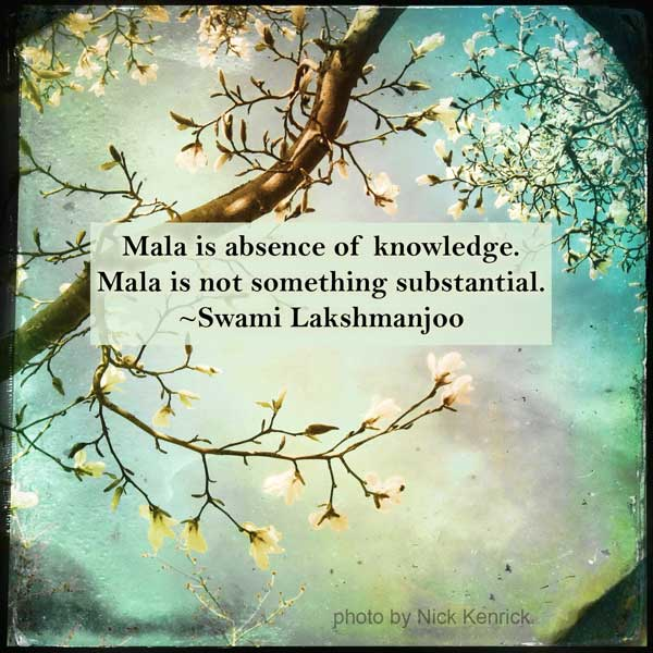 Mala is absence of knowledge. Mala is not something substantial. ~Swami Lakshmanjoo