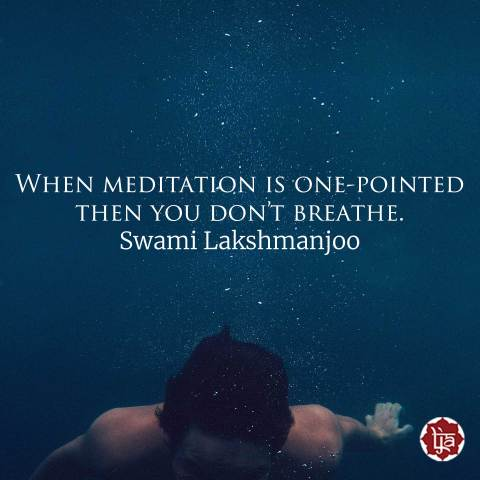 When meditation is one-pointed then you don't breathe. ~Swami Lakshmanjoo