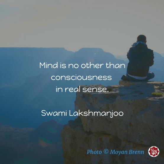 Mind is no other than consciousness in real sense. ~Swami Lakshmanjoo