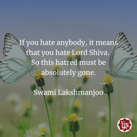 If you hate anybody, it means that you hate Lord Shiva. So this hatred must be absolutely gone. ~Swami Lakshmanjoo