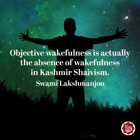 Objective wakefulness is actually the absence of wakefulness in Kashmir Shaivism. ~Swami Lakshmanjoo