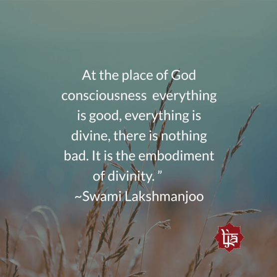 At the place of God Consciousness everything is divine ~Swami Lakshmanjoo