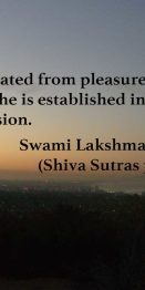 Separated from pleasure and pain, he is established in real seclusion. Swami Lakshmanjoo (Shiva Sutras 3.34.)