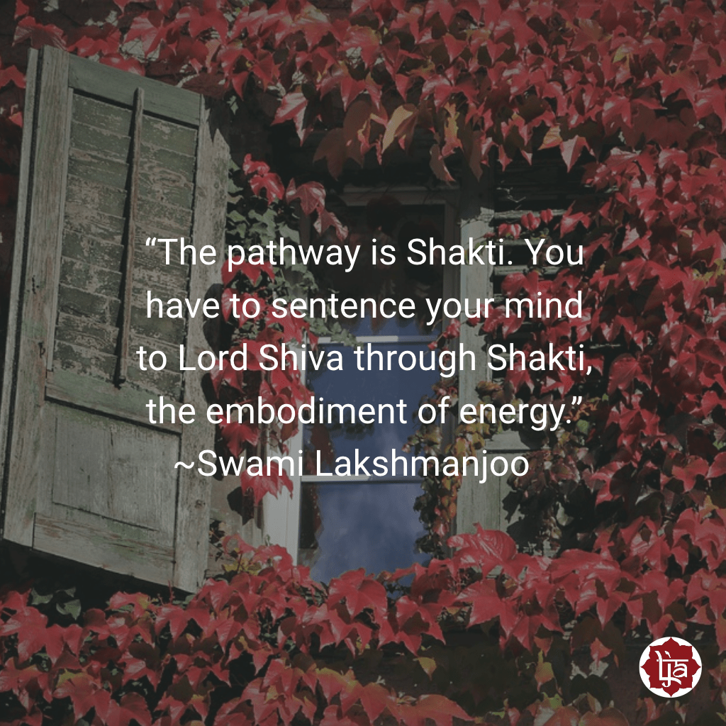 """""""The pathway is Shakti. You have to sentence your mind to Lord Shiva through Shakti, the embodiment of energy."""" ~Swami Lakshmanjoo"""