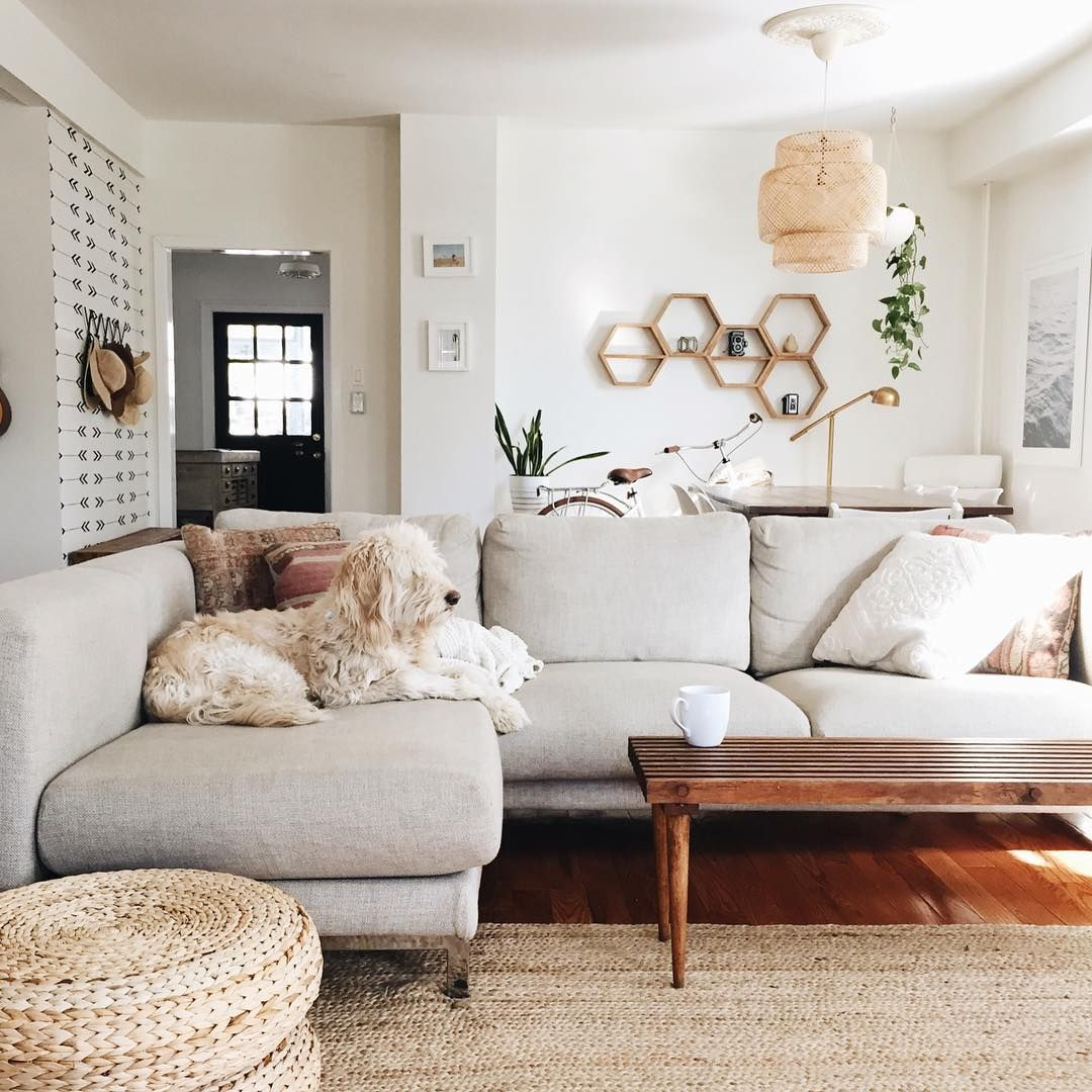 Cozy Sectional