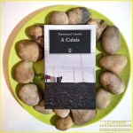 A Calais - Emmanuel Carrere - Adelphi