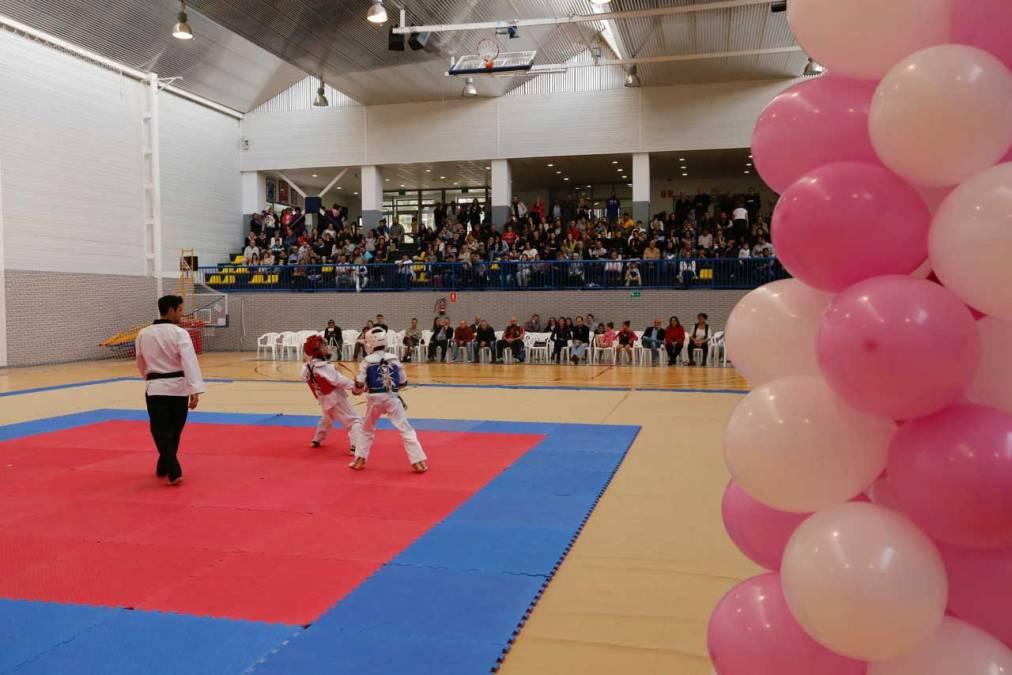 La gala a beneficio de Anémona consigue recaudar 1.500 euros