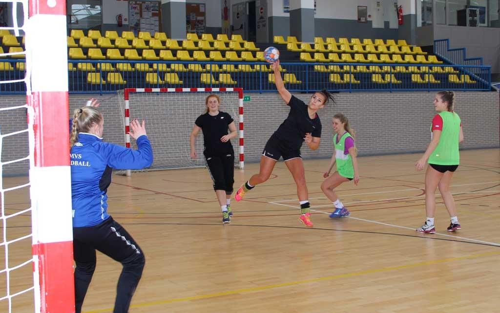 40 Alumnos noruegos de  la escuela superior de la localidad de Meraaker  están en l'Alfas del Pi.