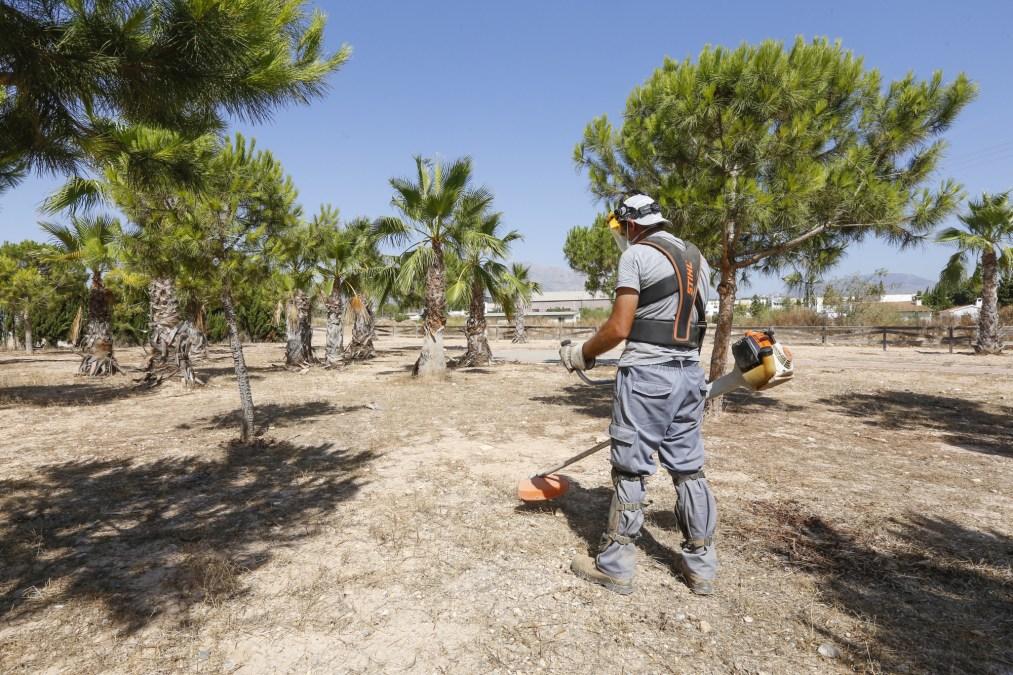 L'Alfàs del Pi procede a la limpieza de un importante tramo del Barranco Hondo y del Parque de Sant Pere