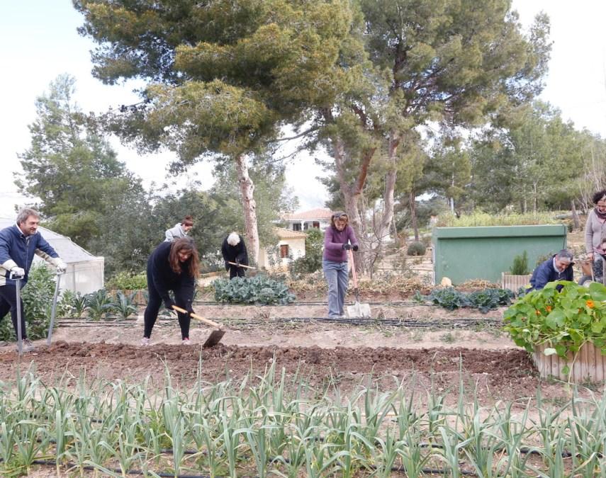 Medio Ambiente lanza un nuevo curso de agricultura ecológica ante la demanda existente