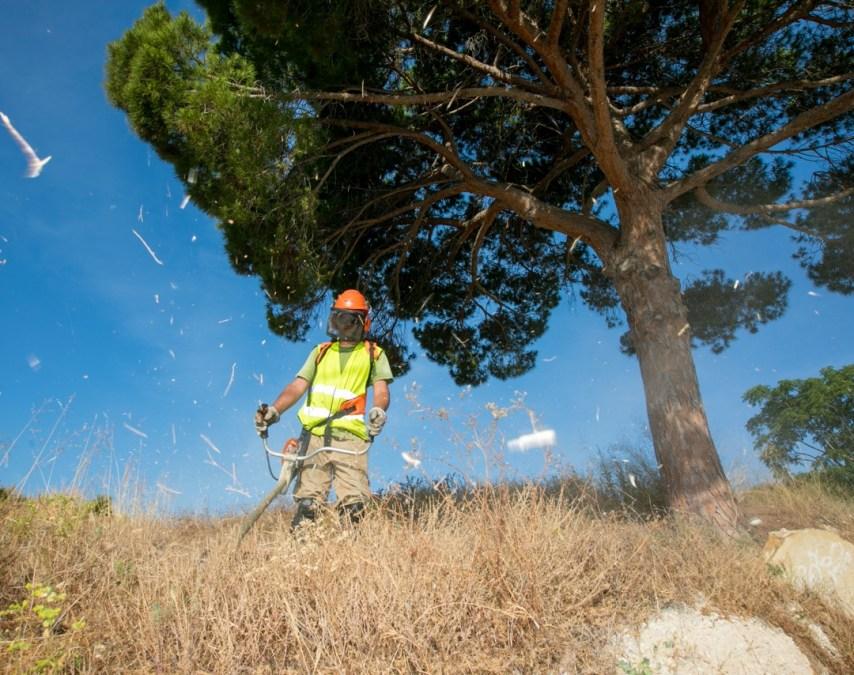 L'Alfàs desarrolla un plan de limpieza en caminos, barrancos y parcelas para minimizar los riesgos de incendio