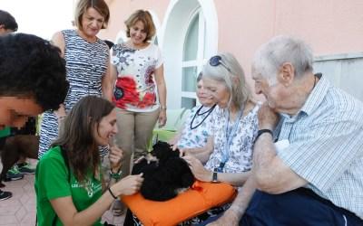 Los alumnos del programa de terapia con perros realizan sus prácticas en colaboración con Anneke