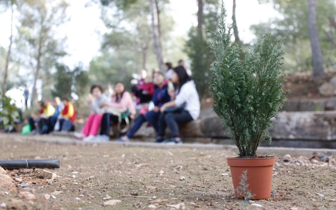 Se anula la celebración del Día del Árbol