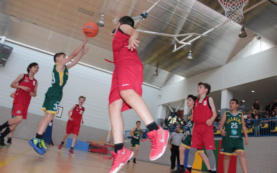 Tres  equipos de L'Alfàs del Pi quedan primeros en sus categorías en la IX Costa Blanca Basket Cup.