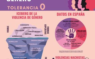 Igualdad da a conocer dos estudios sobre violencia de género en mujeres con discapacidad intelectual