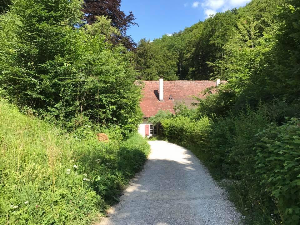 Wangarte Richtung Mühle