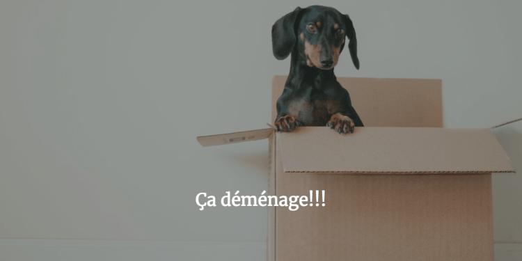 photo_demenagement