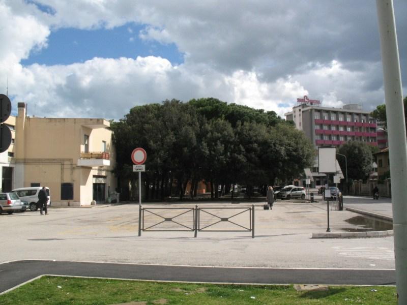 Alla stazione di Senigallia gli alberi non saranno abbattuti