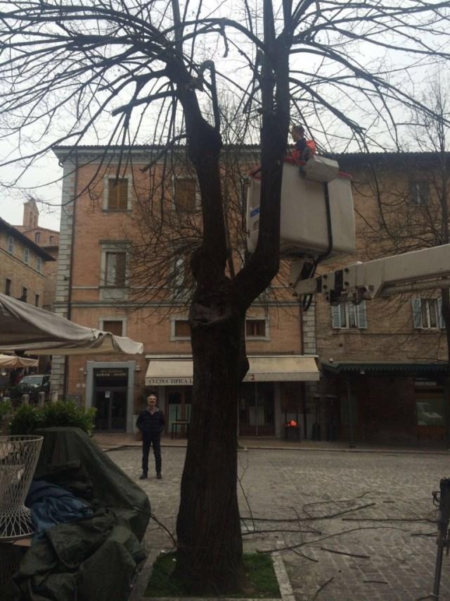 Finalmente Urbino mostra tutta la sua bellezza