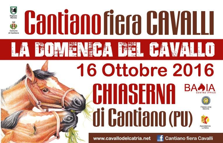 Torna la domenica del cavallo, a Chiaserna di Cantiano si replica