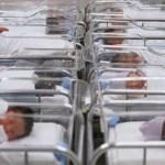 Una bimba muore all'ospedale di Senigallia tre ore dopo il parto