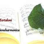 TRECASTELLI / Nella Chiesa Parrocchiale di San Pellegrino venerdì sera un suggestivo concerto con corno e organo