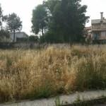 I proprietari delle aree edificabili e delle case non abitate obbligati dal Comune di Castelleone di Suasa alla pulizia