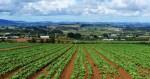 Modelli, politiche e strategie per lo sviluppo dell'agricoltura biologica, un Corso di formazione permanente all'Università di Urbino
