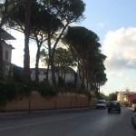 Avviati a Senigallia i lavori per il rifacimento del manto stradale di via Cellini