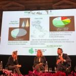 """Il sindaco Mangialardi: """"Senigallia diventa un modello internazionale per la gestione del verde urbano"""""""