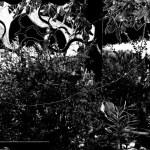 """Domenica a Ostra incontro con gli artisti protagonisti della mostra """"Sulle orme del Poeta"""""""