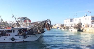Da venerdì niente pesce dell'Adriatico: scatta il fermo pesca