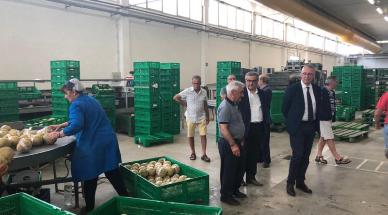 """Ceriscioli in visita al Codma di Fano: """"Un settore strategico per la nostra economia"""""""