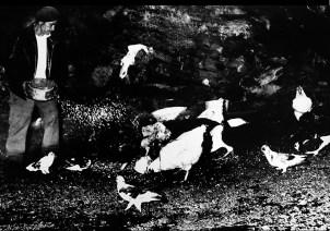 locanina giacomelli foto piena sfondo nero corretta