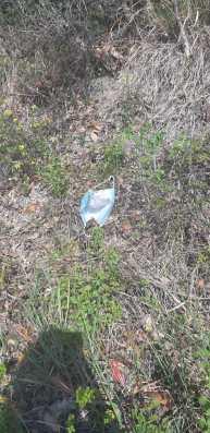 CORONAVIRUS mascherine terra2020-04-27