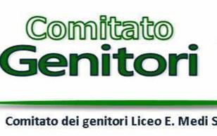 senigallia logo COMITATO MEDI