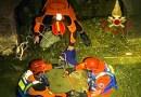 Capriolo cade in un canale della centrale idroelettrica, salvato dai vigili del fuoco / FOTO e VIDEO