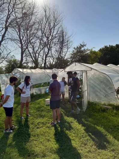 SENIGALLIA progetto policoro campi lavoro giovani2020-07-13 (1)