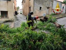 ANCONA maltempo Gallignano2020-08-04 (1)