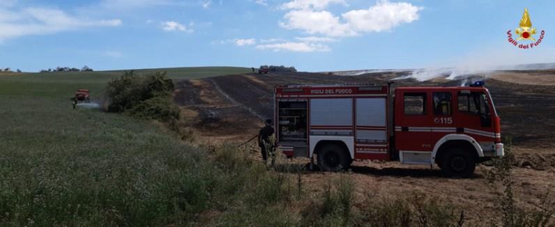 MONTECAROTTO sterpaglie incendio vdf2020-08-26 (3)