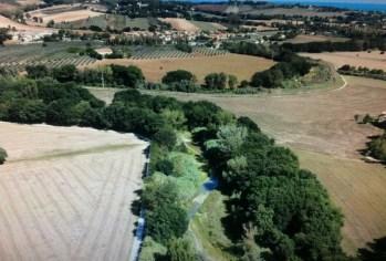 misa fiume letto panoramica SENIGALLIA2020 (6)