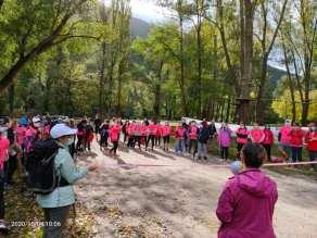 FOSSOMBRONE furlo flaminia rosa camminata2020-10-05 (2)