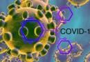 Coronavirus / Oggi i nuovi positivi sono 448, meno del solito ma sempre tanti