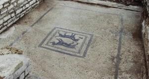 FOSSOMBRONE Parco_Archeologico Forum Sempronii2020 (5)
