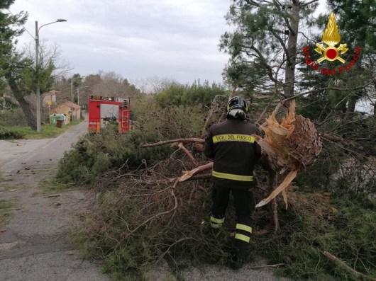 vigili del fuoco intervento vento forte2021-01-23